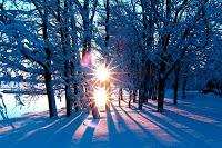 Winter_Sun_1.14100204